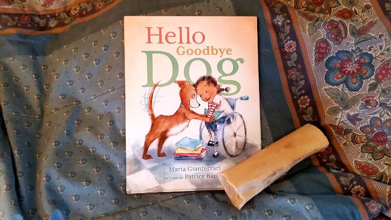 Hello Goodbye Dog: A Review